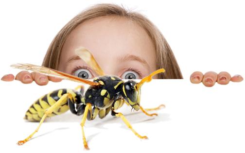 pest-control attack