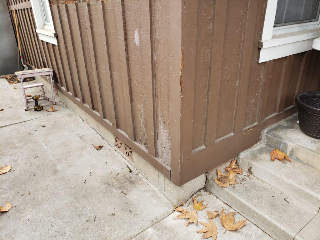 Minor Termite Visible Damage
